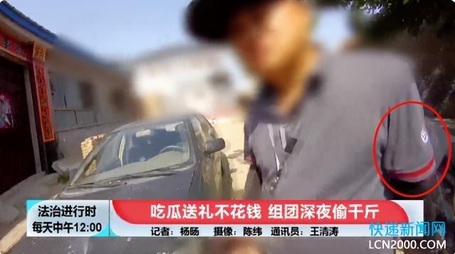 北京瓜农一夜被偷4000斤西瓜,竟是顺丰快递员组织团伙作案?